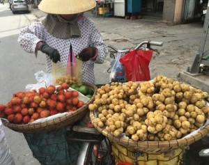 自転車の果物売り